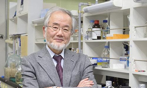 Giai Nobel Y-Sinh hoc 2016 vinh danh giao su Nhat Ban Yoshinori Ohsumi