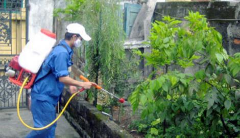 Tiếp tục giám sát phát hiện bệnh nhân sốt xuất huyết tại Hà Nội