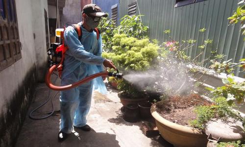 Đà Nẵng khẩn trương triển khai các biện pháp phòng chống bệnh sốt xuất huyết